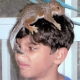 There's a wild squirrel on Jesse's head